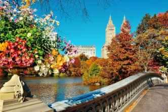 autunno-new-york